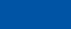 logo 100 szerokie